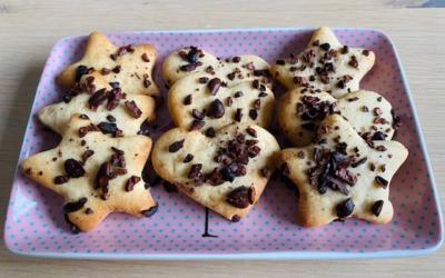 Biscuits moelleux aux éclats de fèves de cacao